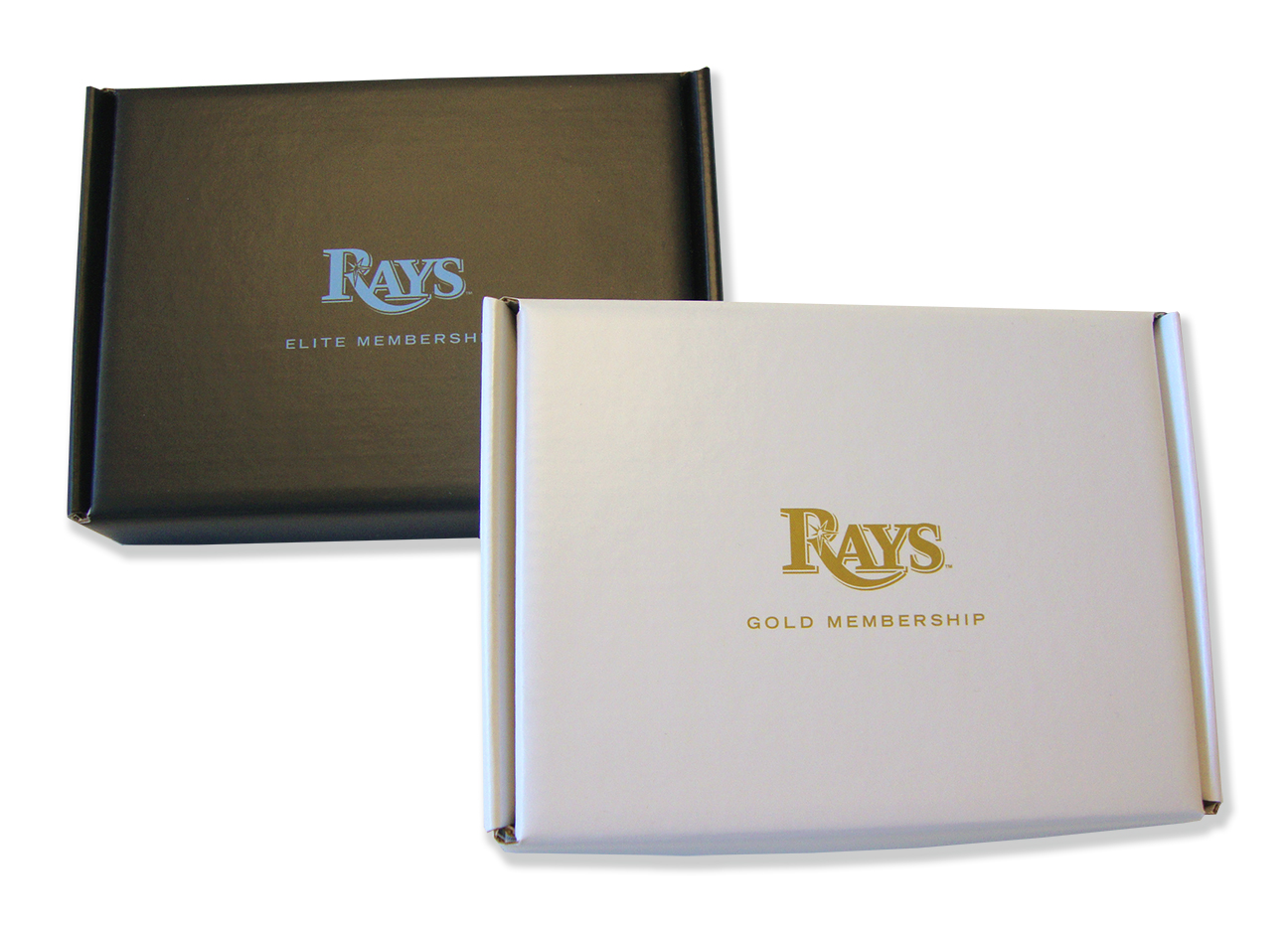 rays-2014-a-2